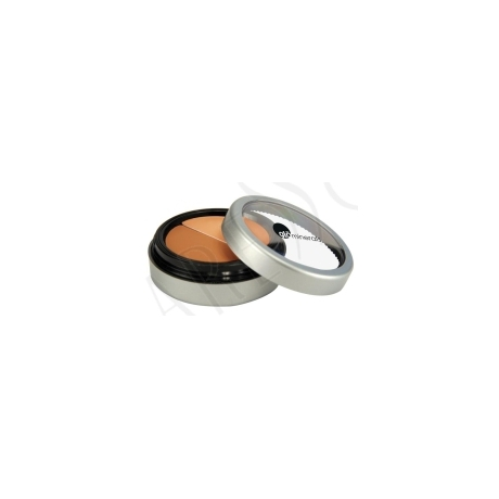GloMinerals Under Eye Concealer Honey
