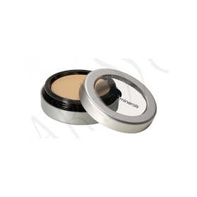 GloMinerals Camouflage Concealer Golden Honey 3.1g