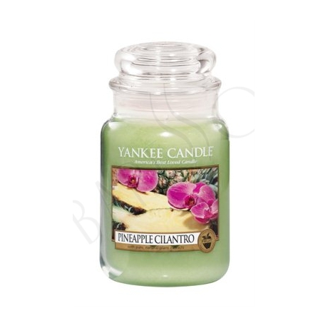 Yankee Candle Pineapple Cilantro LARGE