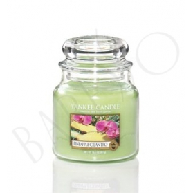 Yankee Candle Pineapple Cilantro MEDIUM