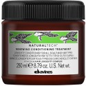 Davines Naturaltech Renewing Conditioning Treatment 250ml